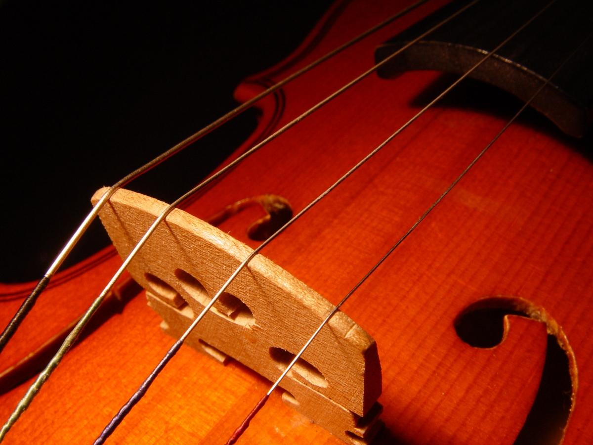 Geige L