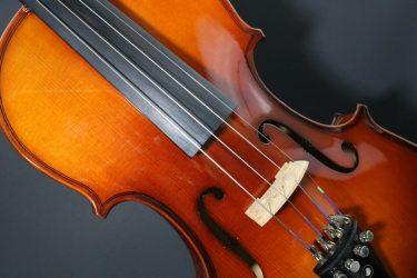 Geige Verleih